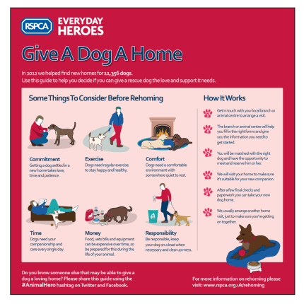 Rehoming_Guide_Dogs
