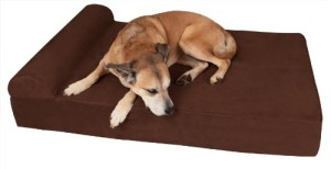 best large dog bed