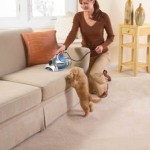 top rated vacuum for pet hair under 100
