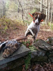 The Boy's First Grouse