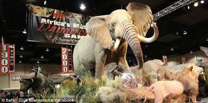 One of the taxidermy displays at the 2016 Safari Club Show in Vegas