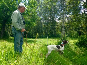 Craig working a gorgeous pointer he has in his kennel
