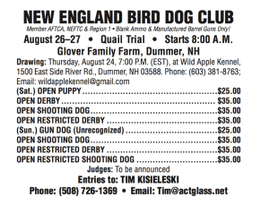 New England Bird Dog Club, August, 2017, field trial