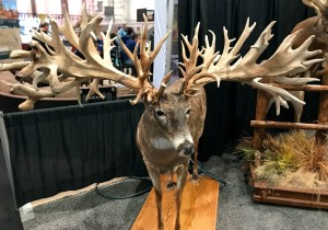 Yeah - that's real - and one of the freakiest deer I've ever seen.