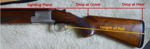 Some key measurements for shotgun fitting