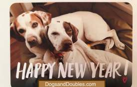 Happy 2019 from Dogs and Doubles