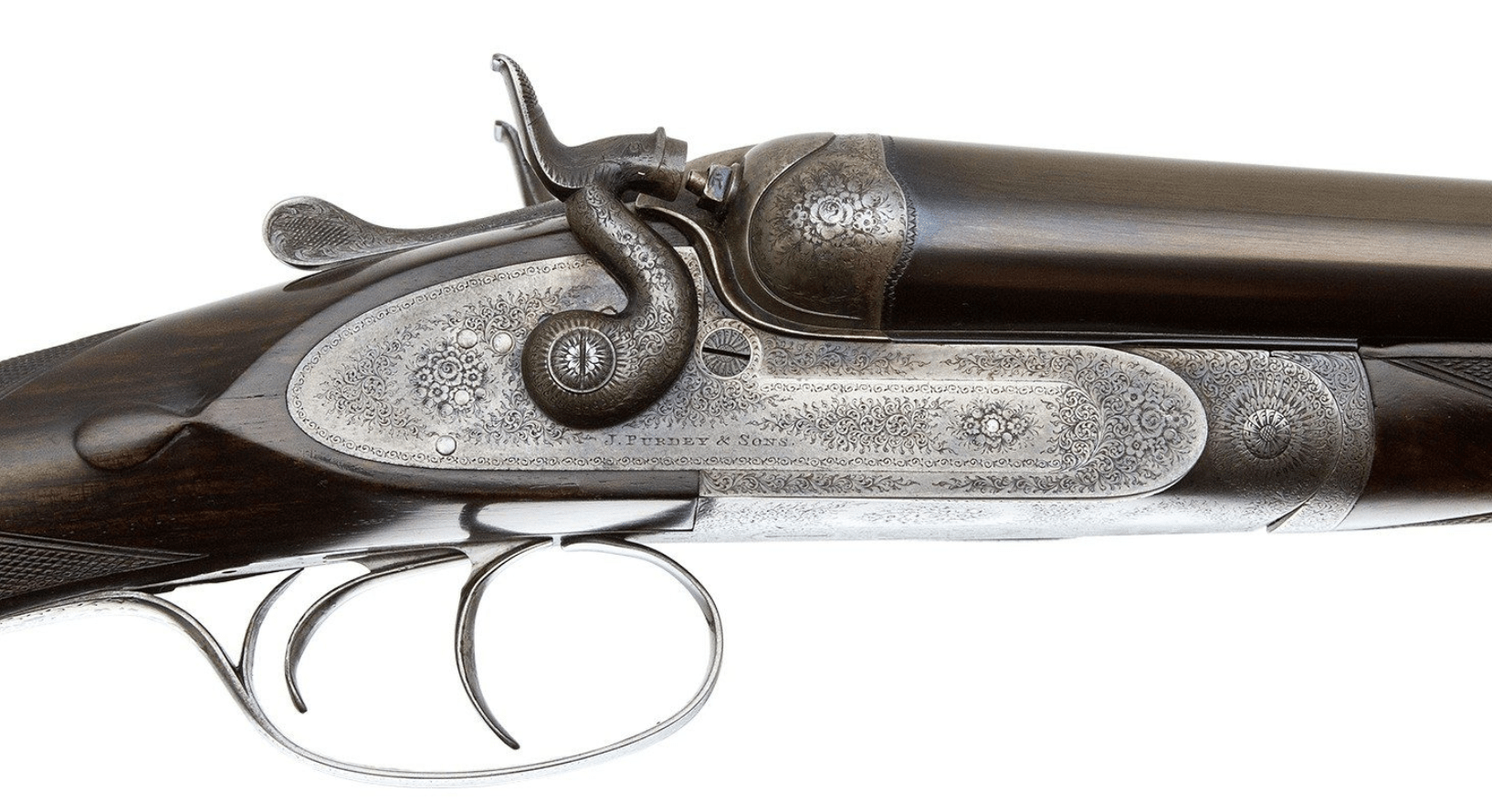 Beretta Archives - Dogs and Doubles