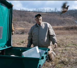 Gov. Justice and WV DNR announce five-year project to restore Bobwhite Quail to West Virginia