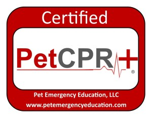 Dogs Colorado First Aid and CPR Certified