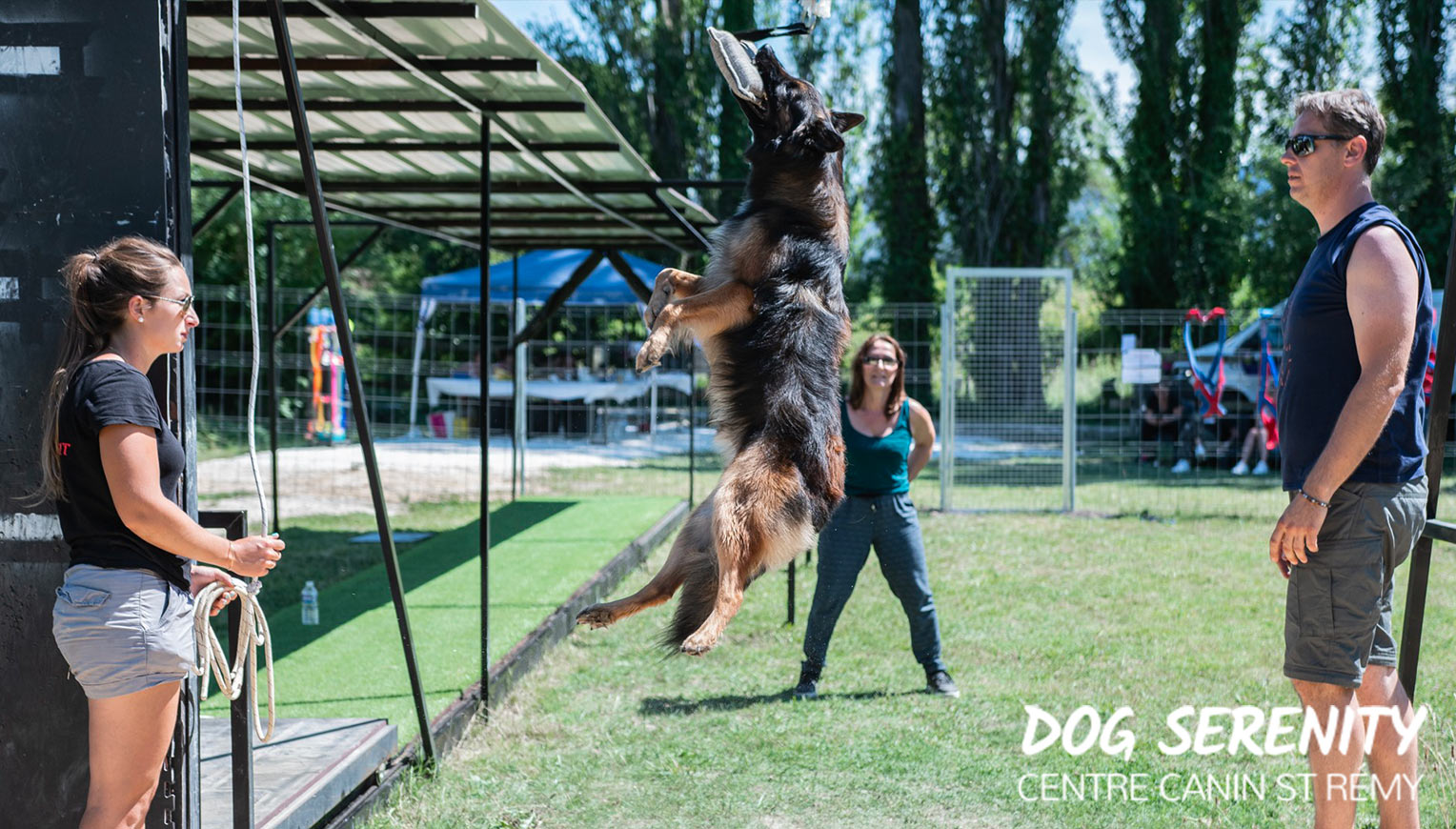 Sport Canin - Dog Crossfit - Weight pulling - Saint Rémy de Provence