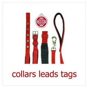 puppy_collars_leads_tags-500x5001
