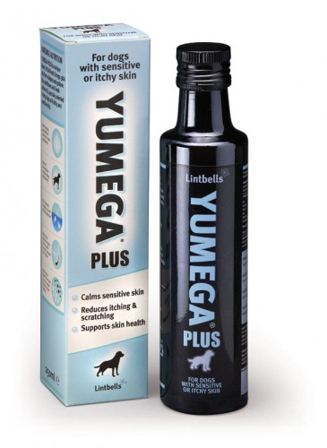 Lintbells-Yumega-plus-for-dogs-365x500