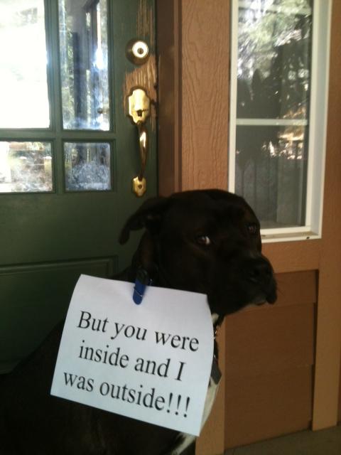 Hector front door