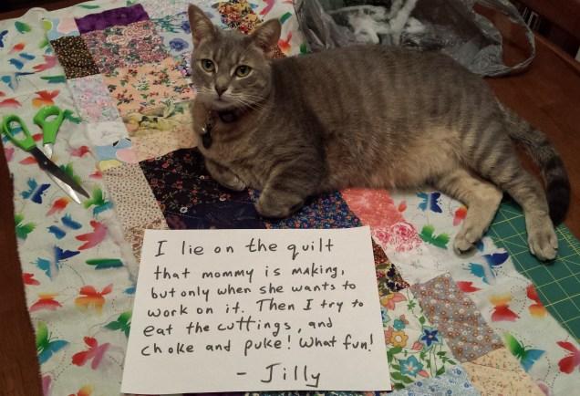 Jilly-Shamed