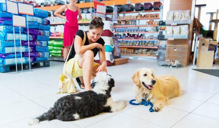 pet food ingredient myths