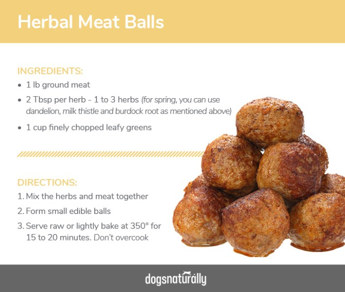 Meat-Ball-Recipe-For-Dogs