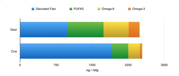 omega-3-oil-for-dogs