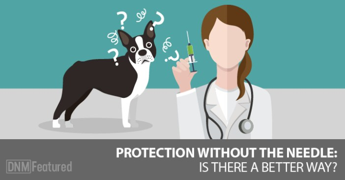 do dogs need vaccinations