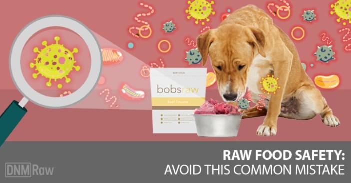 raw dog food safety