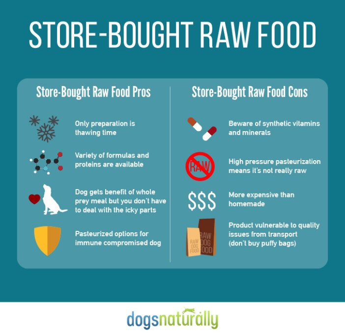 raw food for dogs homemade vs premade