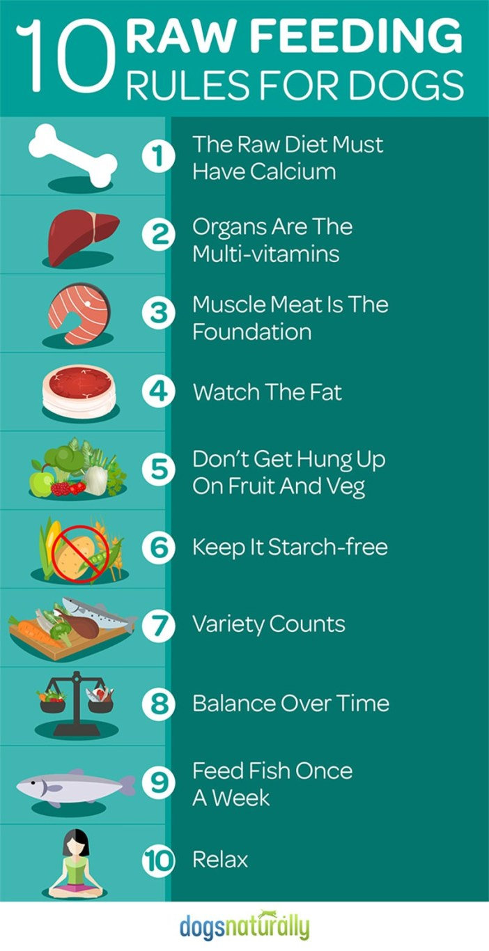 10 Raw Feeding Rules For Dogs