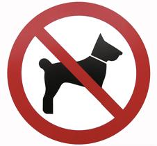 dog ban