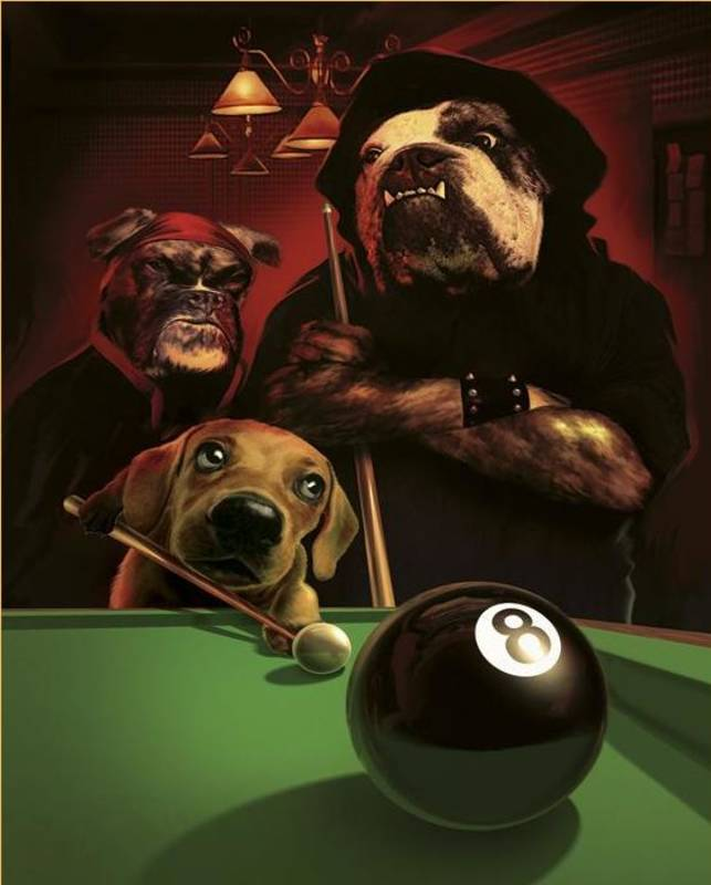 The Eight Ball By Gerard Taylor