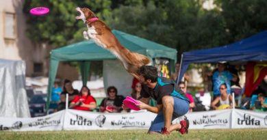 Disc Dog: Simone Villani, dalla paura dei cani ai campionati italiani distance