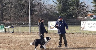 La mia prima gara cinofila di Rally Obedience!