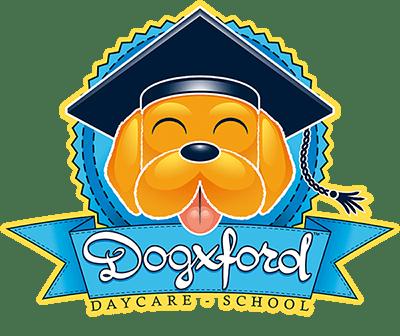 Sul sito dell'asilo di Dogxford trovi tutte le informazioni e il modo di prenotare la tua esperienza con il cane