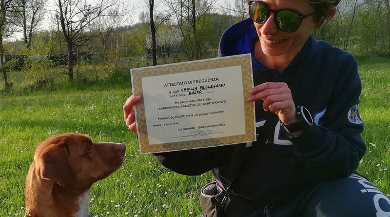 Sporty Dogs Gang: a Piacenza nascono un negozio e un'associazione sportiva grazie a Balto & Camilla