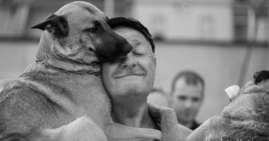 La vita dietro una lente: storie di cani e di umani