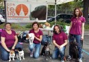 """Associazione ConTeSto: la """"pet therapy"""" che include"""