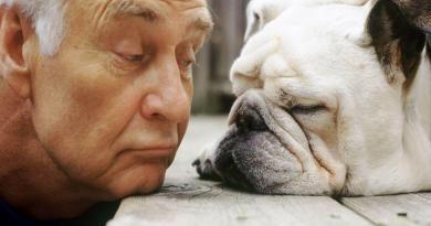 LATTE O LIMONE? Una scelta giusta a volte non esiste…anche quando parliamo dei nostri cani.