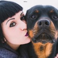 Dai basta! I cani non sono tutti uguali. Il mio Rottweiler non è il tuo maltese!