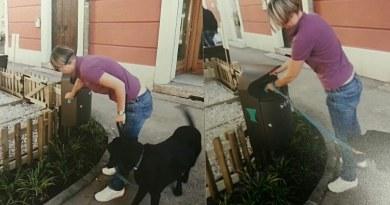 La prima Dog Toilette a Trento