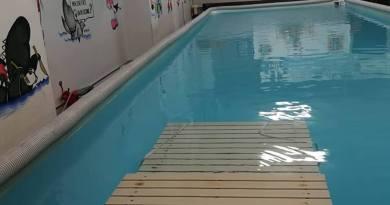 Dog's Sporting Academy. La piscina cinofila di Brescia