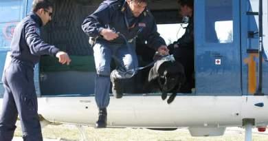 Gli onori a Gino, il cane poliziotto di Bari