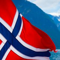 Norvegia: cani malati. Tutti gli aggiornamenti