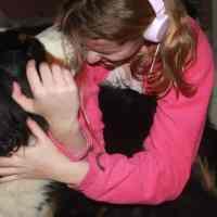 La perdita di un cane per un allevatore.
