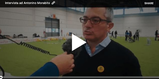 Intervista ad Antonino Morabito - Legambiente