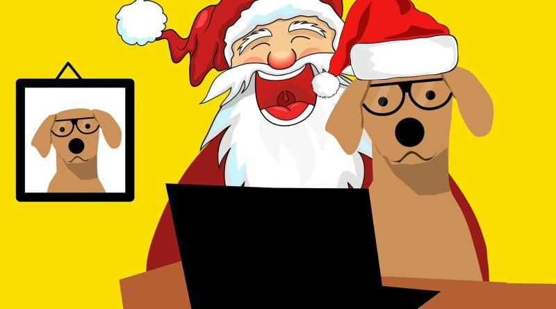 Web marketing cinofilo: come gestirlo a Natale