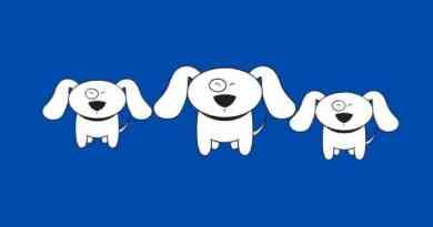 Autismo: quando il cane può migliorarci la vita?
