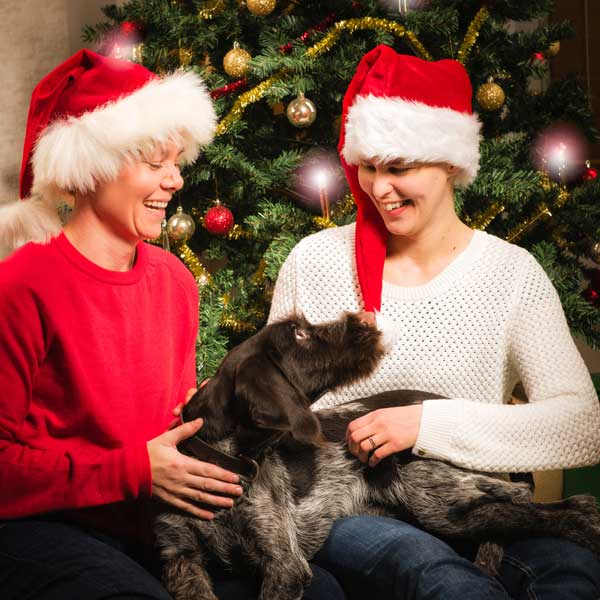 women dog christmas - How to Prepare Your Pup