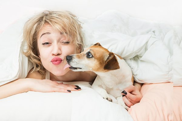A woman in bed with her dog getting a kiss from him.