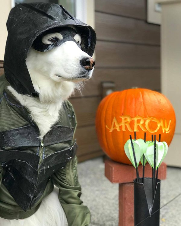 Carter in his Green Arrow costume. Submitted by Facebook user Bethany Vinton.