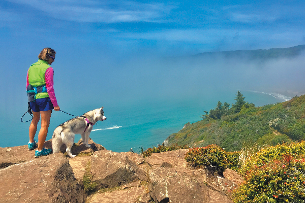 Build up to harder hikes with your dog.