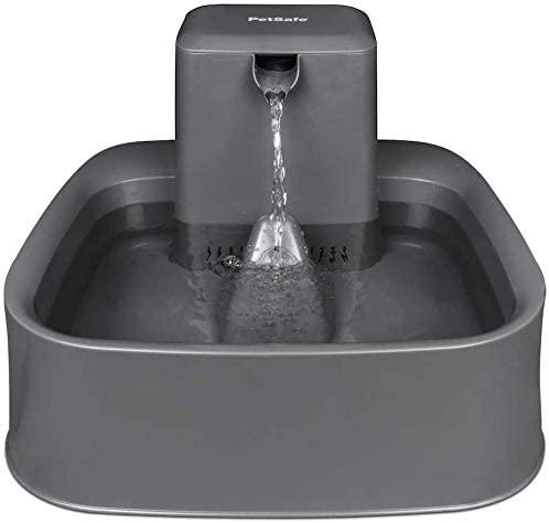fontaine à eau petsafe drinkwell petit chien