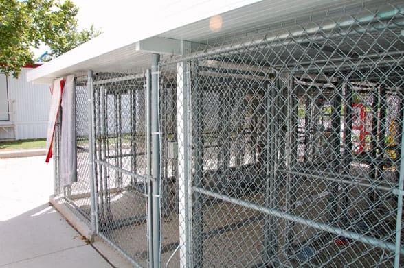 Dog Kennels Outside Inside
