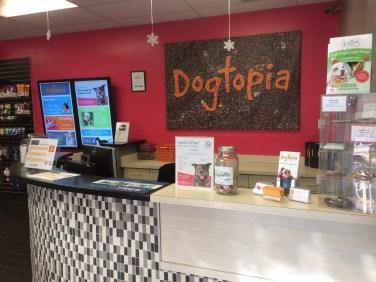Dogtopia Canton lobby